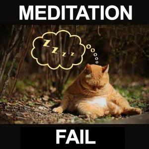 cat meditation